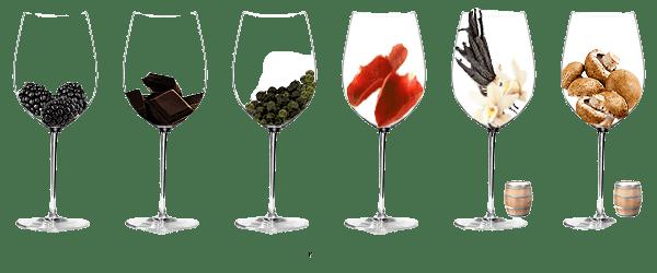 Arôme du vin