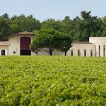 avis vin Rosé de Chevalier